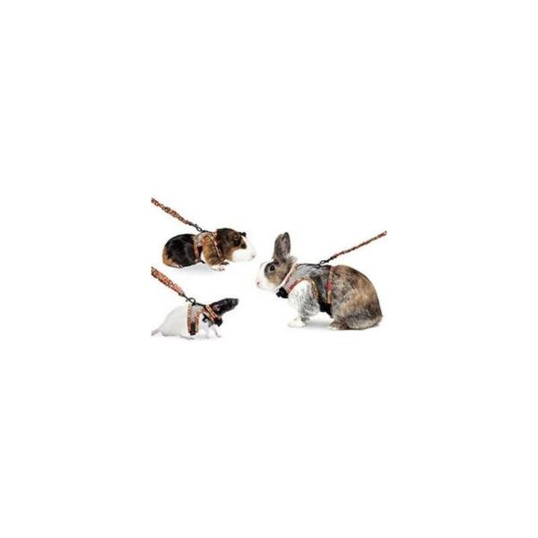 Art Joy sele+line til Rotter. S omkreds 11,5-21 cm. og 11,5-19,5 cm. Line 77-120,5 cm./20 mm.