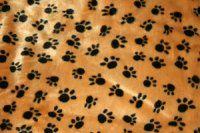 Hundepude 60x45 cm. Beige med sorte potetryk.