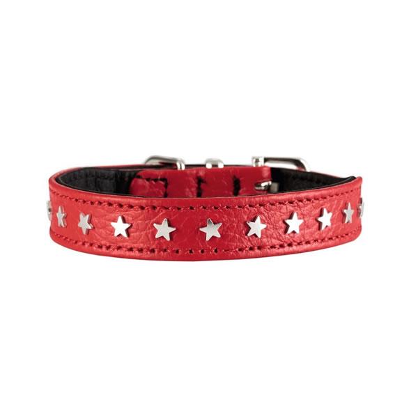hundehalsbånd med stjerner
